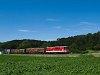 Az ÖBB 2143 056-6 Sautern-Schiltern és Pitten között