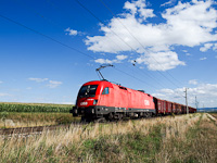 The ÖBB 1116 160-1 seen between Müllendorf and Neufeld a/d Leitha