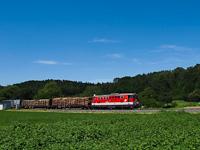 Az �BB 2143 056-6 Sautern-Schiltern �s Pitten k�z�tt