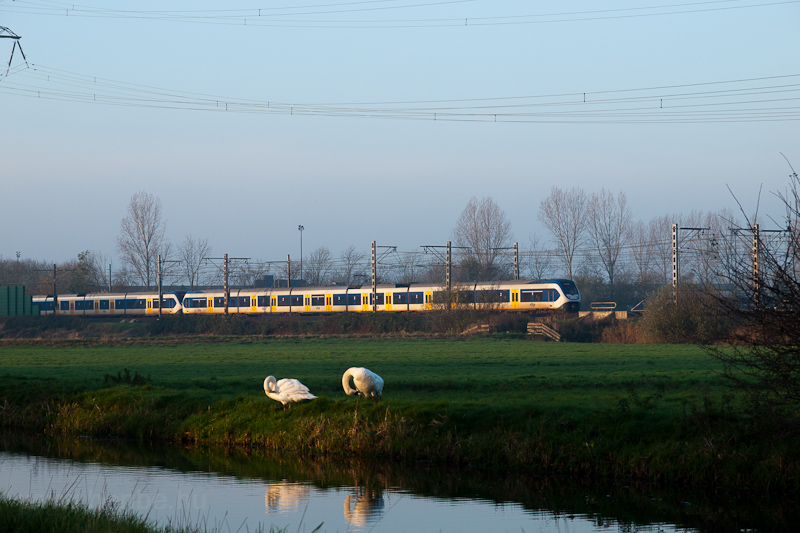 A 4+6 part coupled NS Sprinter LightTrain trainset between Voorschoten and De Vink photo