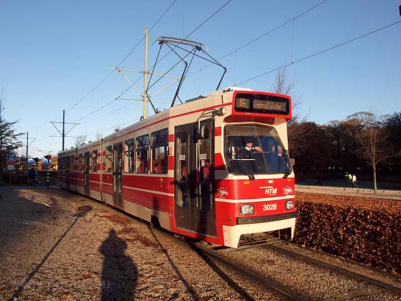 Tram at The Hague photo