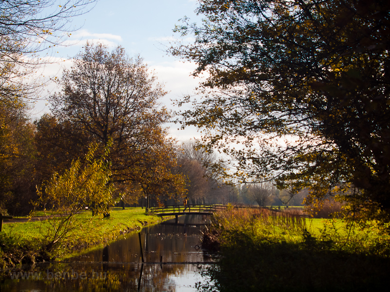 The Rijnpark at Leiden photo