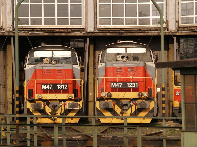 The M47 1312 and M47 1231 at Székesfehérvár photo