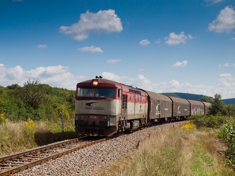 A ŽSSKC 751 118-1 Lice fotó