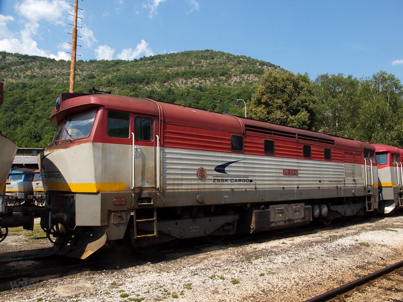 A ŽSSKC 751 173-6 Pels fotó