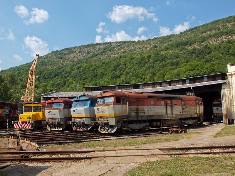 A ŽSSKC 199 405-2, 751 026, 751 118-, 751 125-6 és a 752 043-0 Pelsőcz állomáson fotó