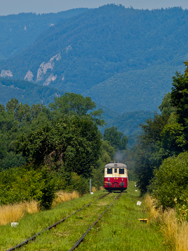 The KŽC Doprava M 262 0124 seen between Muránska Dlhá Lúka and Muráň photo