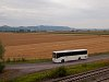 Egy busz