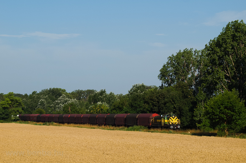 The GYSEV/Raaberbahn M40 402 with the Preymesser freight train between Neszmély and Süttő (somewhere near Várhegyalja stop) photo