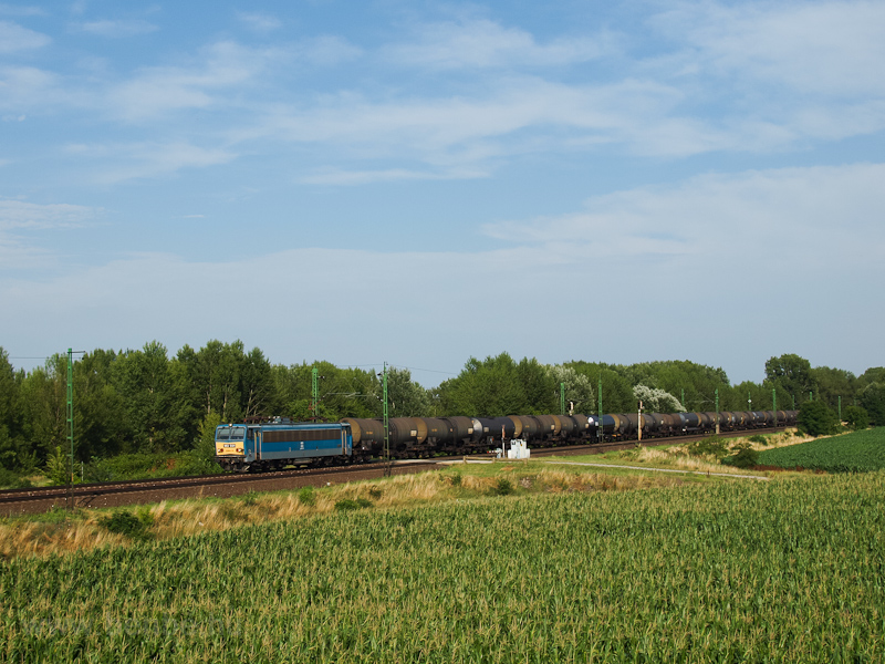 The V63 031 seen between Szőny and Komárom photo