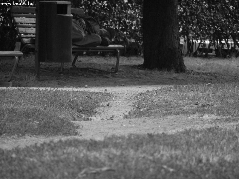 Az egyetlen általam látott csöves Helsinki Töölö negyedében fotó