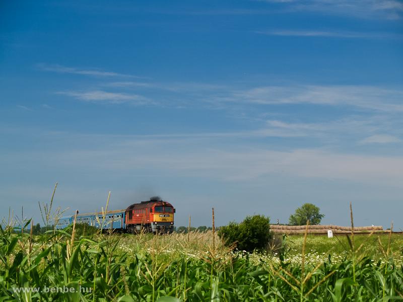 M62 272 Mezőtárkány és Egerfarmos között egy kukoricásban fotó