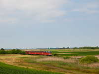 The MDmot 3006 between Konyár and Konyári Sóstófürdő
