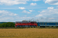 The MÁV-START M62 194 seen in a panned shot between Balatonfüred and Aszófő