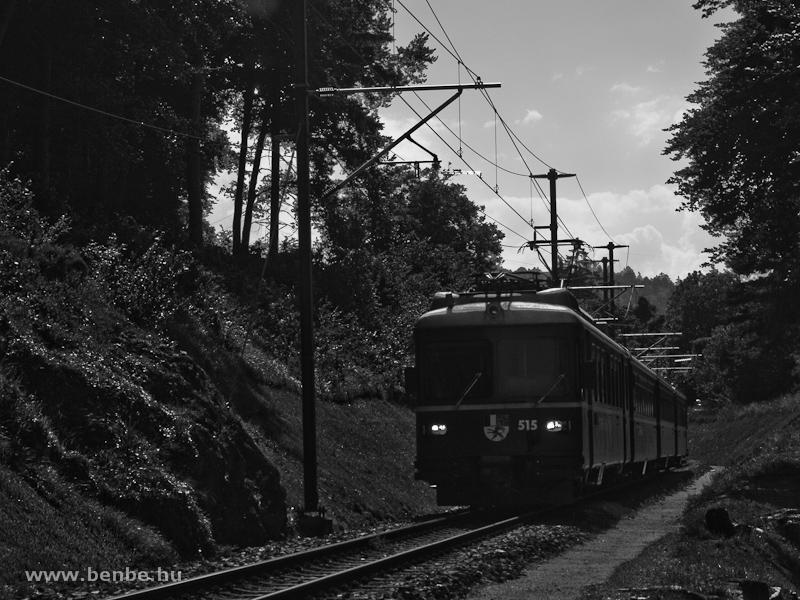 A Be 4/4 515-ös S-Bahn motorvonat Bonaduz és Reichenau-Tamins között fotó