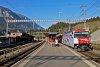 A Ge 4/4<sup>III</sup> 650 <q>Unesco-Welterbe</q> Reichenau-Tamins állomáson