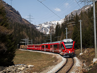 Egy ismeretlen Allegra Alp Grüm és Cavaglia között