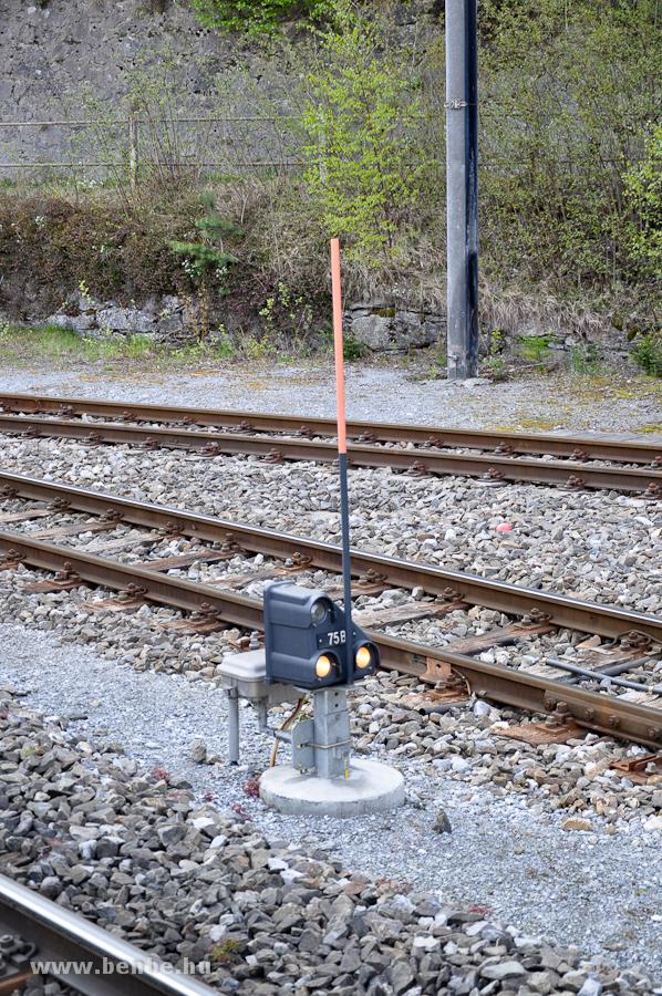 Törpe tolatásjelző Reichenau-Taminsban fotó