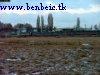 Near Vecs�s