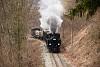 The Steyrtalbahn  steam locomotive 498.04 seen between Pergern and Neuzeug