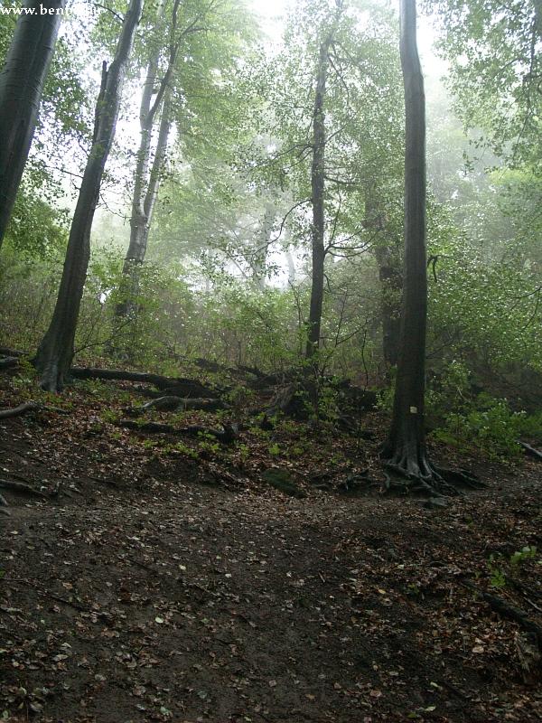 Dobogókõ a reggeli ködben fotó