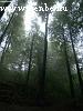 Dobogókõ a reggeli ködben
