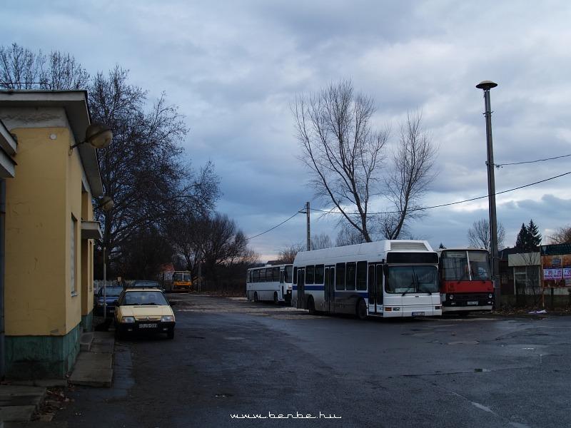 Vonatra ráhordó helyijáratok Isaszegen fotó