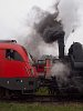 Our Taurus and the Austrian steam locomotive wearing an interesting make-up