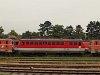 The 1046 016-0 at Strasshof