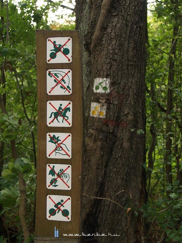 Ellentmondó erdészeti intézkedések fotó