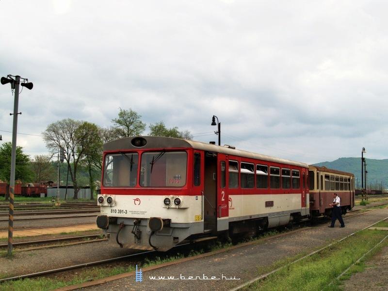 810 391-3 Füleken fotó