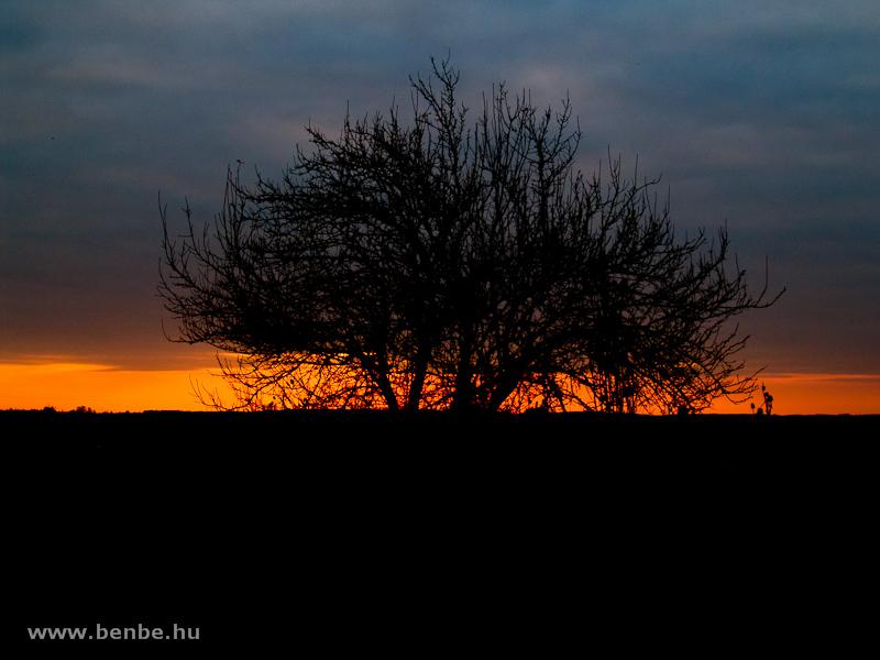 Napnyugta Porcsalma-Tyukodon fotó