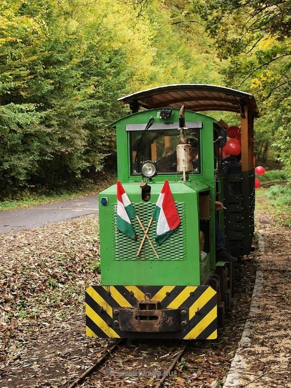 A Kemencei Erdei Múzeumvasút PN-3 mozdonya esküvői különvonattal Feketevölgyben fotó