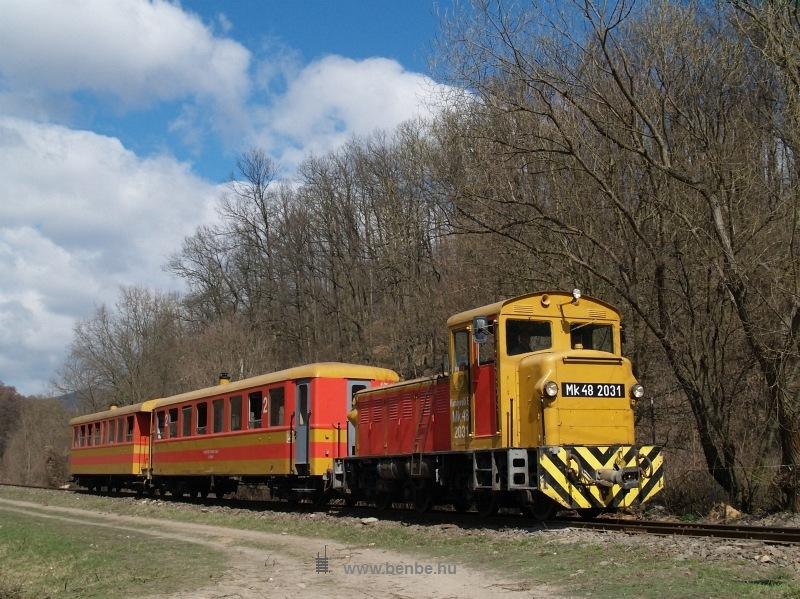 Mk48 2031 Királyrét alsón az  Utolsó Színpompás Vonattal  fotó