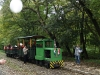 The PN-3 of the Kemence Forestry Museum Railway at Feketevölgy with a wedding train