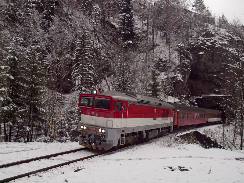 The ŽSSK 757 007-0 see picture
