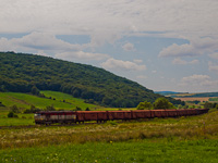 An unidentified ŽSSKC 751 seen hauling a freight train between Blhovce and Hodejov on the number 160 Zvolen - Košice railway