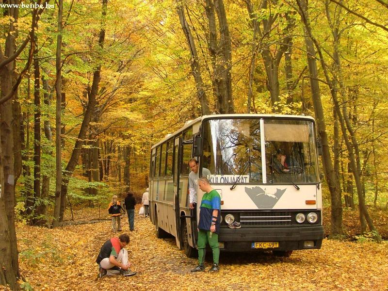 Ez pedig Recskre érkezett erdei futók autóbusza volt. fotó