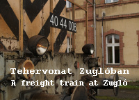 A freight train at Zugl�