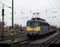 V43 1379 lekttt hts szedvel Rkosrendezn