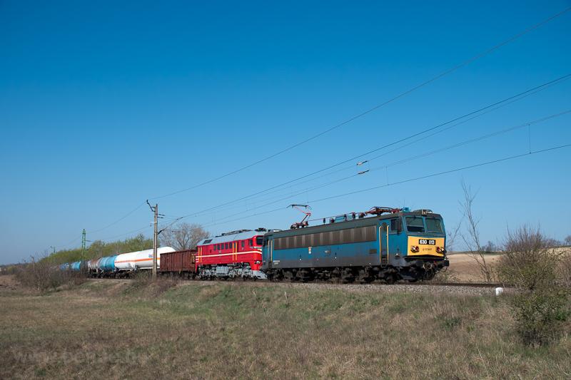 A MÁV-START 630 013 pályaszámú Gigantja előfogatolja a 628 194 pályaszámú, bajszos festésű retró-Szergejt Simontornya és Sáregres között fotó