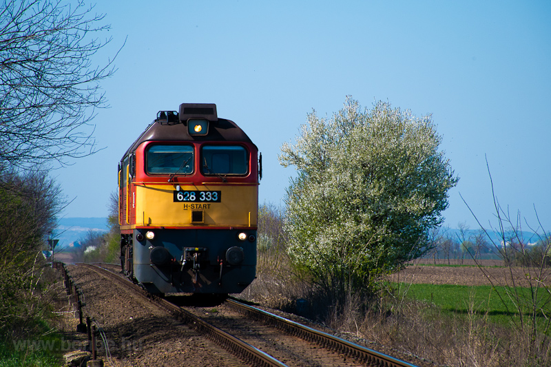 The MÁV-START 628 333 seen between Székesfehérvár and Börgönd photo
