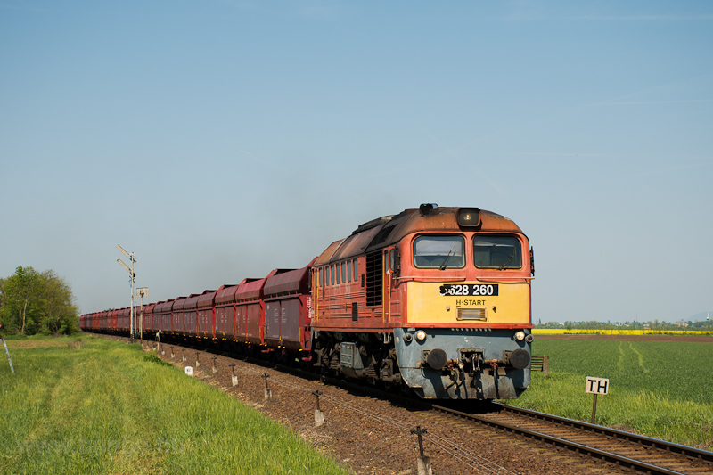 The MÁV-START 628 260 seen between Székesfehérvár and Börgönd photo