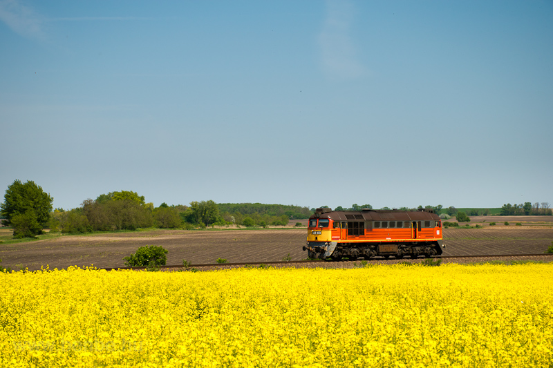 The MÁV-START 628 333 seen between Pusztaszabolcs and Zichyújfalu photo