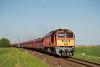 A MÁV-START 628 260 Székesfehérvár és Börgönd között