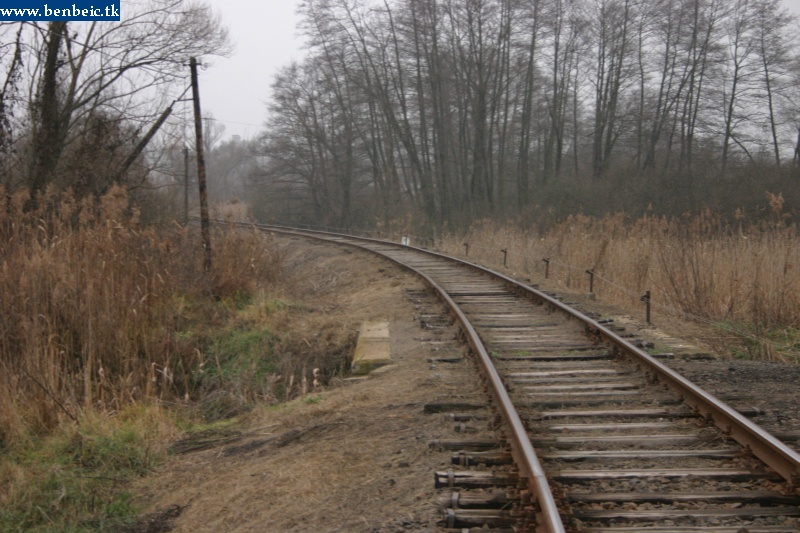 Tolmács közelében fotó