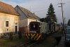 A Királyréti Erdei Vasút Mk48 2031 Szokolya-Mányoki és Szokolya-Riezner között
