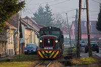 The Királyréti Erdei Vasút Mk48 2031 seen between Szokolya-Mányoki and Szokolya-Riezner