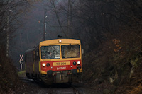 The MÁV-START 117 298 seen between Magyarkút and Magyarkút-Verőce
