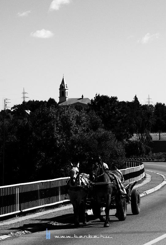 Lovaskocsi indul Dornestibõl fotó